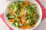 American Asian Carrot And Sprout Salad Recipe Drink