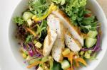 American Chicken And Mango Salad With Walnuts Recipe Appetizer
