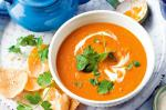 American Carrot Lentil And Coconut Soup Recipe Appetizer