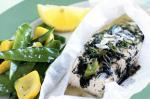 American Fish Parcels With Lemon And Dill Recipe Appetizer