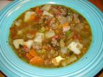 American Hearty Ground Beef Vegetable Soup Appetizer