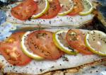 American Elegant Baked Fish With Tomato and Lemon Dinner