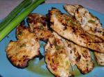 Australian Sweet and Spicy Grilled Chicken With Green Onions BBQ Grill