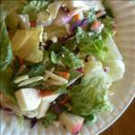 Canadian Apple Almond Crunch Salad 1 Appetizer