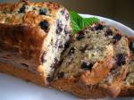 American Banana Blueberry Bread 2 Appetizer