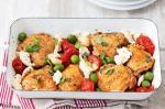 Italian Easy Italian Chicken Bake Recipe 1 Appetizer