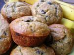 American Low Fat Chocolate Chip Banana Muffins Dessert