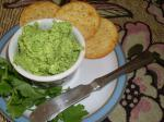 American Coriander and Goats Cheese Pesto Appetizer