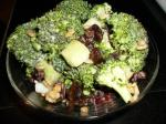 American Broccoli Salad lite Appetizer