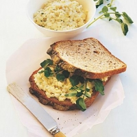 Australian Egg Salad Sandwiches Breakfast