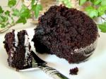 American Healthy  Black Devils Food Cake Appetizer