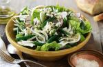 Iranian/Persian Green Bean Fennel And Radish Salad With Persian Feta Recipe Appetizer