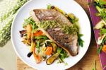 American Snapper With Olive Dressing and Roasted Zucchini Salad Recipe Appetizer