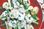 American Potato And Asparagus Salad Recipe 2 Appetizer