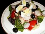 Australian Low Carbohydrate Salad Nicoise Dinner