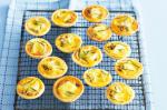 Canadian Caramelised Onion And Brie Mini Quiches Recipe Appetizer