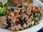 Italian Farro Salad With Tomatoes and Herbs  Giada De Laurentiis Appetizer