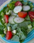 Canadian Simple Healthy Summer Salad Green and Tossed Appetizer