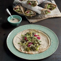 Arabic Falafel and Tarator Wraps Appetizer