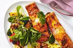 American Baked Fish With Harissa Vegetable Salad Recipe Appetizer