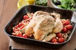 American Roasted Pesto Chicken With Cannellini Beans Recipe Dinner