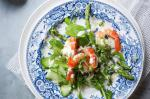 Australian Prawn and Asparagus Salad With Coconut Dressing Recipe Appetizer