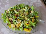 American Bibb Greens Topped With Orange Dried Cranberries and Sunflower Appetizer