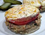 Turkish Tuna Melt Sandwiches 3 Appetizer