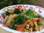 American Creamless Penne Pasta Primavera With Olive Oil and Garlic Dinner
