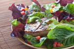 American Grilled Tofu Salad with Miso Dressing Appetizer