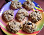 Armenian Oatmeal Raisin Cookies 33 Dessert