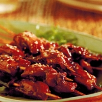 Vietnamese Barbecue Skewers BBQ Grill